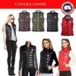 存在感のある 2016秋冬 CANADA GOOSE カナダグース ダウンジャケット6色可選