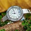 気要チェック 2018春夏新作 カルティエ CARTIER 女性用腕時計
