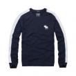 19春夏最新モデル 手に入れやすい価格帯 アバクロンビー&フィッチ Abercrombie & Fitch  長袖Tシャツ 4色可選