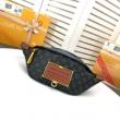 高級感と軽さを与える限定品 ルイヴィトン Louis Vuitton ショルダーバッグ レディース コピー 定番 おすすめ 品質保証 M45220